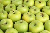 Juicy apples, close up — Stock Photo