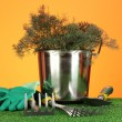 Garden tools on lawn on bright colorful background close-up — Stock Photo #14953885
