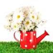 Flowers in vase on grass isolated on white - Stockfoto