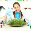Young female scientist is conducting experiments with plants in  laboratory - Stock Photo