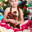 Stock Photo: Beautiful little girl in holiday dress with toy in hands in festively decorated room