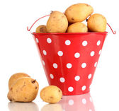 Ripe potatoes in red pail isolated on white — Stock Photo