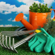 Garden tools on lawn on sky background close-up — Stock Photo