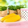Boiled corn on the pink table cloths on the background of nature — Stock Photo
