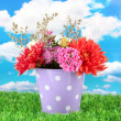 Purple bucket with white polka-dot with flowers on sky background — Stock Photo