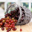 Ripe pink grapes in basket on wooden table on window background — Stock Photo #15313307
