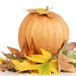 Ripe orange pumpkin yellow autumn leaves isolated on white — Stock Photo #15314607