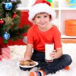 Little boy in Santa hat with milk and cookies for Santa Claus — Stock Photo #15318311
