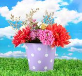 白い水玉空を背景に花と紫のバケツ — ストック写真