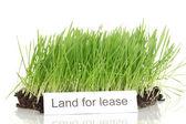 Groen gras met grond als concept van land verkoop geïsoleerd op wit — Stockfoto