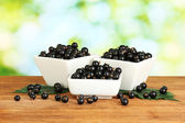 Fresh black currant in white bowls on green background close-up — Stock Photo