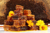 Sweet honeycombs with honey and flowers, on honeycombs background — Stock Photo