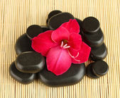 Spa stones with gladiolus bud on straw background close-up — Stock Photo