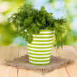 Colorful pot with parsley and dill on wooden table on natural background — Stock Photo