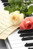 Background of piano keyboard with roses — Stock Photo