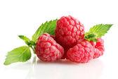 与白色上孤立的薄荷成熟莓 — 图库照片