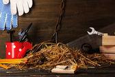 Past na myši s kouskem sýra v stodole na dřevěné pozadí — Stock fotografie