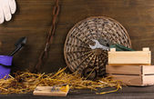Mousetrap with a piece of cheese in a barn on wooden background — Stock Photo