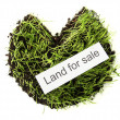 Green grass with ground as concept of land sale isolated on white — Stock Photo
