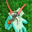 Secateurs with flower on green grass background — ストック写真