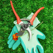 Secateurs with flower on green grass background — Stok fotoğraf