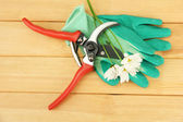 Secateurs with flower on wooden background — Stockfoto