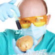 Stock Photo: Scientist injecting GMO into potato