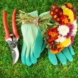 Secateurs with flowers on green grass background - Stock Photo