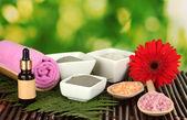 Kosmetické jíl pro lázeňské procedury izolovaných na pestré zelené pozadí — Stock fotografie