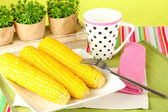 Boiled corn and a cup on a green background — Stock Photo