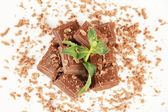 Chocolate crumb with mint close-up — Stock Photo