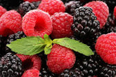 Background of beautiful berries with leaves — Stock Photo