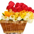 Beautiful tulips in basket isolated on white — Stock Photo #15666097