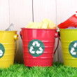 Recycling bins on green grass near wooden fence — Stock Photo #15667837