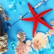 Stock Photo: Decor of seashells close-up on blue wooden table