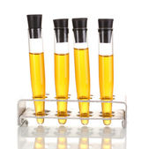 Test-tubes with yellow liquid isolated on white — Zdjęcie stockowe