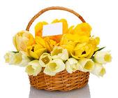 Belle tulipani nel cesto isolato su bianco — Foto Stock