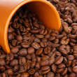 Coffee beans and cup close-up — Stock Photo