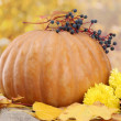 Pumpkin and autumn leaves, on yellow background — Stock Photo #15673325