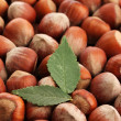 Tasty  hazelnuts with leaves, close up — Stock Photo