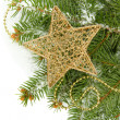 Christmas star on fir tree with snow, isolated on white - Stockfoto