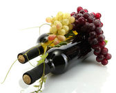 Bottles of wine and ripe grapes isolated on white — Photo