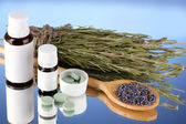 Bottles of medicines and herbs on blue background. concept of homeopathy — Fotografia Stock