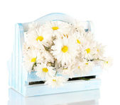 Flowers in wooden box isolated on white — Stock Photo
