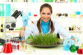 Joven científico femenino está llevando a cabo experimentos con plantas en laboratorio — Foto de Stock