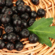 Chokeberry with green leaf on wicker mat close-up - Stock Photo