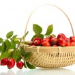 Stock Photo: Ripe hip roses with leaves in basket, isolated on white
