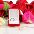 Beautiful box with wedding rings on red, white and pink rose petals background isolated on white - Stockfoto