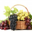 Assortment of ripe sweet grapes in basket, isolated on white — Stock Photo #15833381
