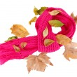 Warm knitted scarf pink with autumn foliage isolated on white - Стоковая фотография